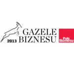 Gazele_Biznesu_2013_150pixeli
